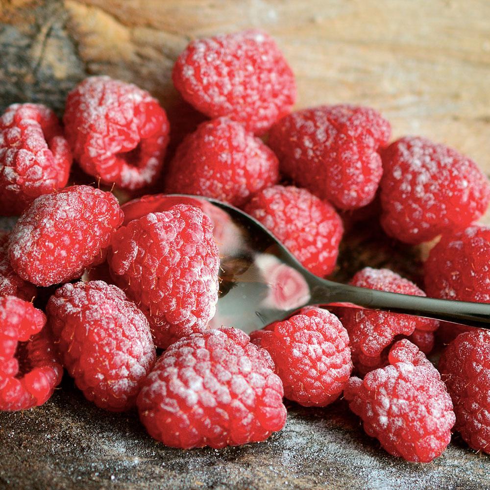 frutas bosque